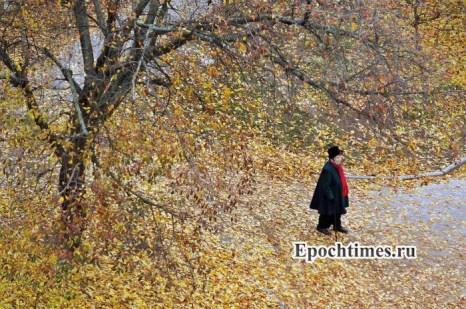 Фото: Великая Эпоха (The Epoch Times)