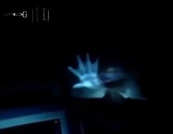 Скриншот видеозаписи с русалкой, увиденной 6 марта 2013 г. морским геологом Торстеном Шмидтом. Фото: скриншот Youtube