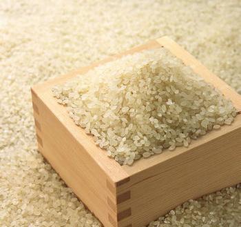 Содержание мышьяка в рисе может привести к генетическим повреждениям. Фото: epochtimes.com