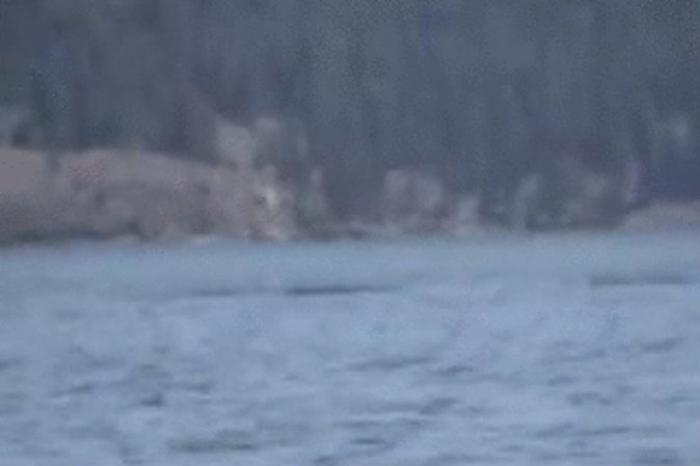 Видео с предполагаемым огопого в Келоуне, Британская Колумбия, Канада. Тёмные пятна — это длинный хвост существа. Но некоторые считают, что это было всего лишь переменчивое течение. Фото: Screenshot/YouTube