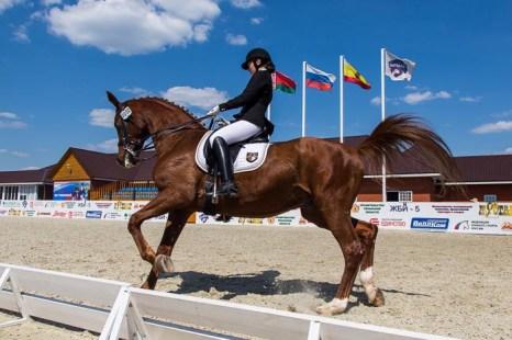 Соревнования по конному спорту в г.Рязани. Фото: Сергей Лучезарный/Великая Эпоха (The Epoch Times)