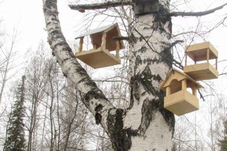 Кормушки для птиц, сделанные детьми, в экологическом центре заповедника. Фото: Мария ЗАГВАЗДИНА/Великая Эпоха (The Epoch Times)