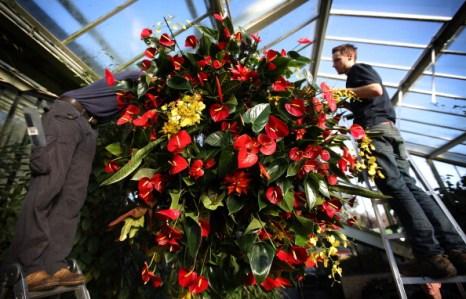 Фестиваль тропических цветов Extravaganza-2012 в Королевском ботаническом саду  в Лондоне. Фото: Peter Macdiarmid/Getty Images