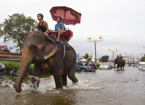 Наводнение в тайском Аюттхае затопило храм – памятник ЮНЕСКО и загон для слонов. Фото: Paula Bronstein /PORNCHAI KITTIWONGSAKUL/AFP/Getty Images