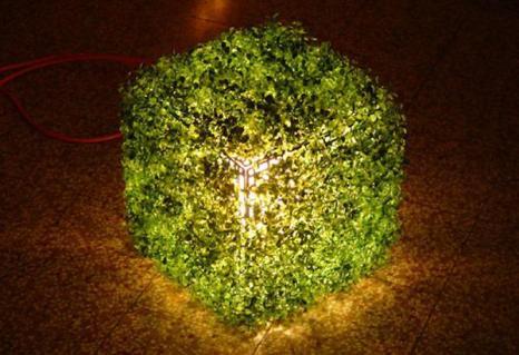 Изделия, дизайн и украшения из живых растений, земли и воды. Фото с сайта fresher.ru