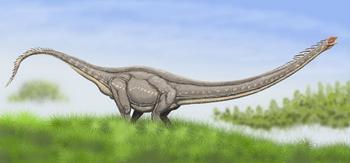 Маменчизавр. Ученые считали, что динозавры вымерли 65 млн лет назад от удара метеорита. Эта версия подверглась сомнению. Отчего вымерли динозавры - остается загадкой. Фото с сайта dinozavr.org
