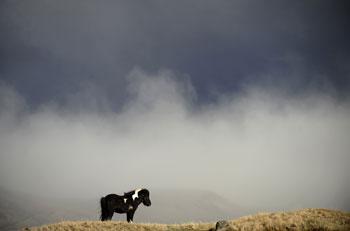 Вулканический пепел в атмосфере. Фото: Emmanuel DUNAND/Getty Images