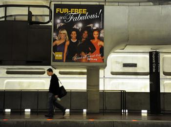 Первая леди США тоже попала в рекламу, и тоже – случайно. Фото:  TIM SLOAN/AFP/Getty Images