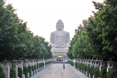 Большая статуя Будды в Bodh Gaya, священном месте, напоминающем храм Maha Bodhi в Бихаре, Индия. Оно известно тем, что было местом, где принц Гаутама Сиддхарта достиг просветления и стал Буддой. Фото: Wikimedia Commons