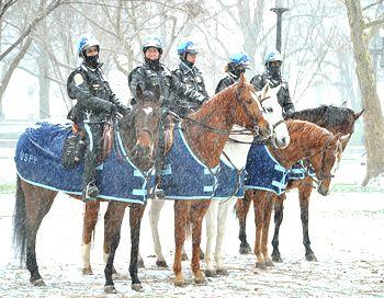 Полицейский патруль в Вашингтоне на службе даже в снежную бурю. Фото: KAREN BLEIER/AFP/Getty Images