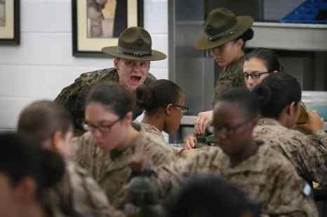 Женщины в армии США. Фото: Scott Olson/Getty  Images