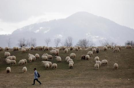 Жизнь в Румынии, 7 марта 2013 года. Фото: Sean Gallup/Getty Images