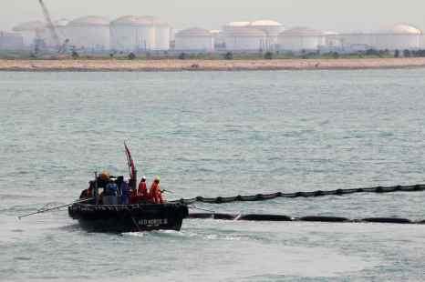 Французские океанологи  заявили, что поверхностно-активные вещества (ПАВ), которые используются для нейтрализации разливов нефти, гораздо опаснее для здоровья европейских морских окуней и другой рыбы, чем само загрязнение. Фото: Nicky Loh/Getty Images