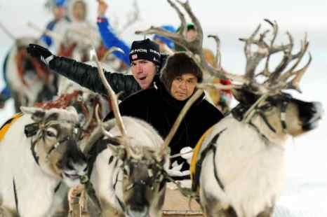Олени в Гренландии, кажется, страдают от изменения климата: их численность уменьшается, говорится в докладе американских исследователей, опубликованном в британском журнале Nature Communications. Фото: NATALIA KOLESNIKOVA/AFP/Getty Images