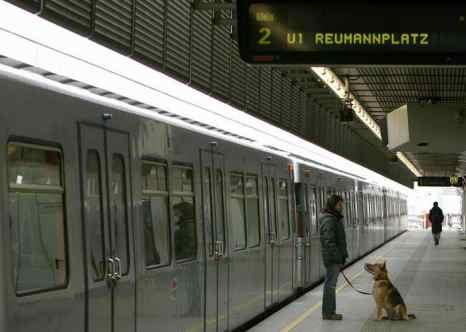 В Вене за поцелуи в метро введены штрафы. К антисоциальному поведению в венском метро отнесли не только поцелуи, но и употребление пищи с резким запахом, громкий разговор по сотовому телефону, прослушивание музыки без наушников. Фото: DIETER NAGL/AFP/Getty Images
