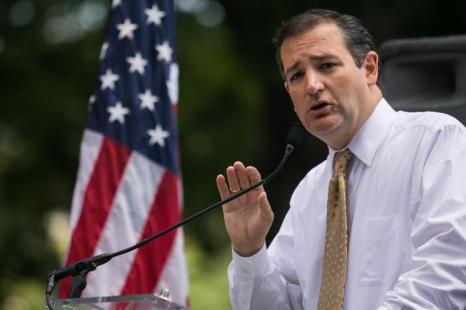 Сенатор от штата Техас Тед Круз выступил на митинге против нелегальной иммиграции у Капитолия 15 июля 2013 года. Фото: Drew Angerer/Getty Images