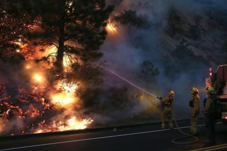 В охваченной новой волной пожаров Калифорнии (США) огонь перекинулся на Йосемитский национальный парк 24 августа 2013 года. Фото: Justin Sullivan/Getty Images