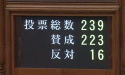 Парламент Японии ввёл запрет на хранение детской порнографии