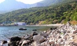 Крым, чиновники, курорт