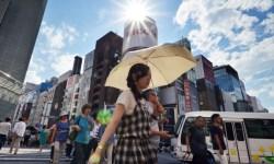 япония, жара, тепловой удар