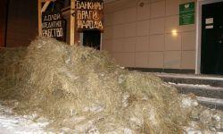 Новосибирский фермер высыпал навоз перед отделением Сбербанка