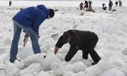 Санкт-Петербург, происшествия, рыбаки, льдина, МЧС