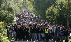 Чехия, беженцы, поезда, границы