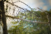 Варвару Караулову обвиняют в попытке присоединиться к запрещённой в РФ террористической группировке ИГ
