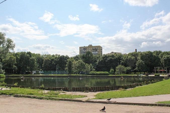 парк Дубки и пруд