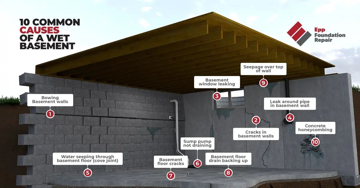 infographic of common causes of a wet basement repair