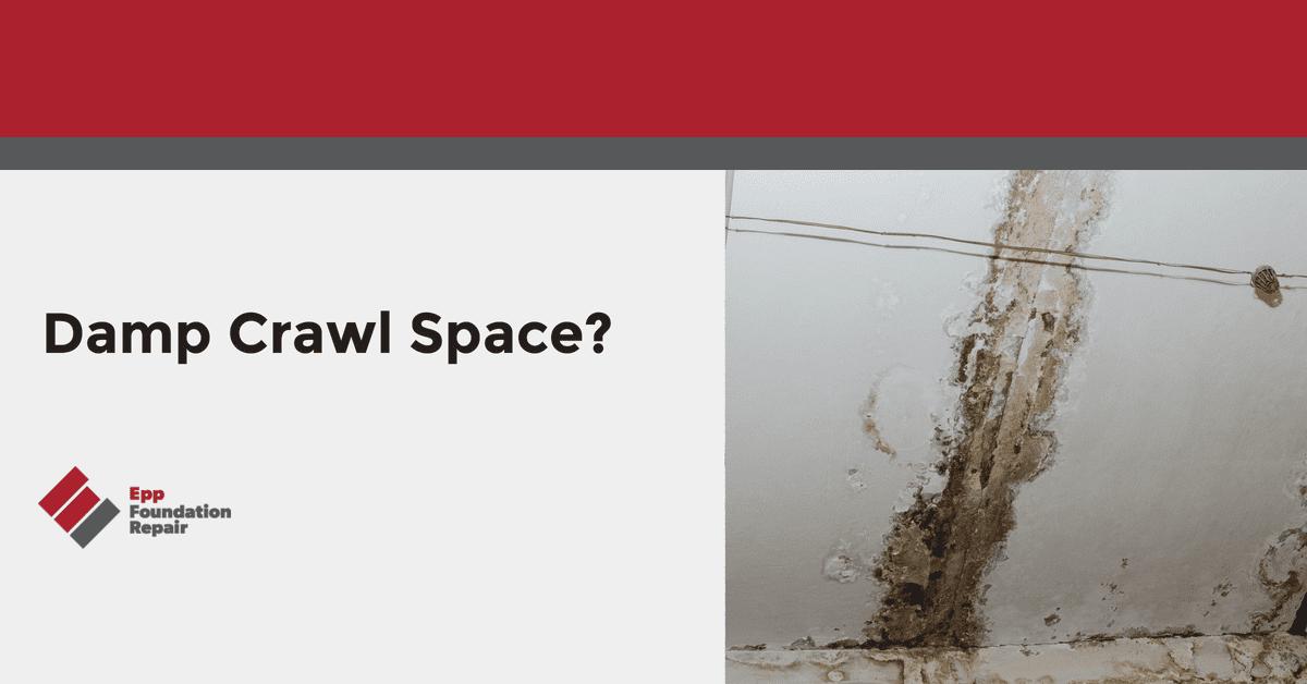 Damp Crawl Space?
