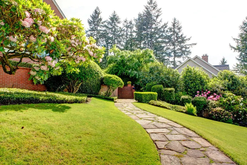 Photo of a sloping front yard