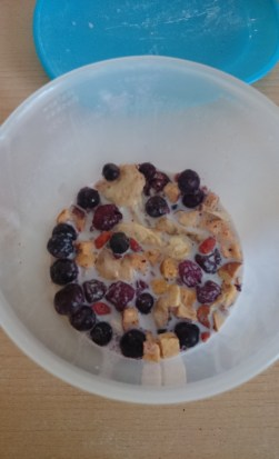 Buah Smoothi Energ Bär Mischung- Milch