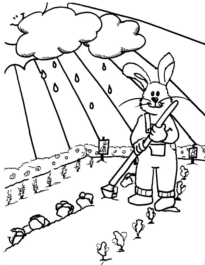 Spring Coloring Pages GARDEN FLOWERS Free Printable