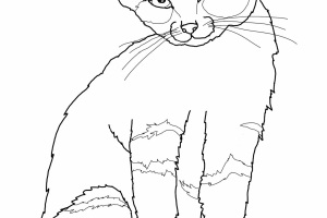 Hello Kitty Cartoon Character Coloring Pages Free