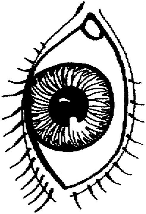 Beautiful Eye Coloring Pages Free Printable Coloring Pages