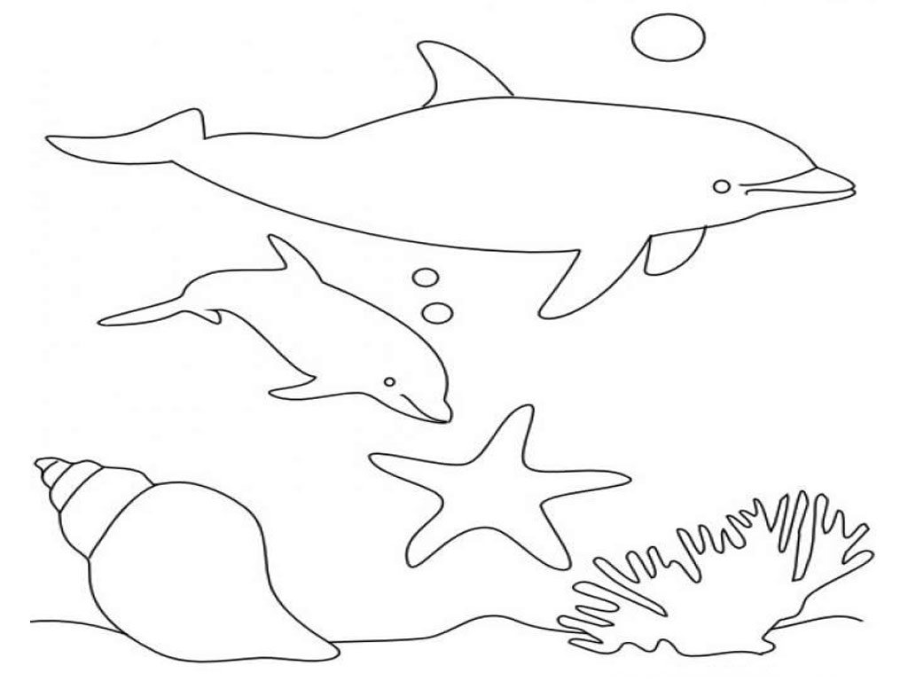 Ocean Dolphin Animal Coloring Pages Free Printable