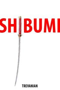 Şibumi