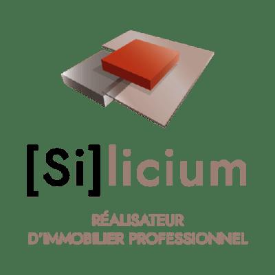 log_silicium512v2