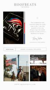 Patriotic Logo for Non Profit Dedicated to Equine Assisted Therapy for Veterans