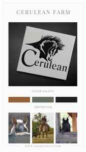 Quarter Horse Head Logo Delivers Masculine Branding With Personal Touch