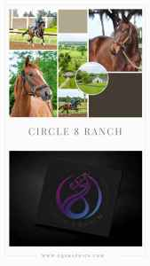 Icon Style Circle Logo for Unique Horse Racing Brand