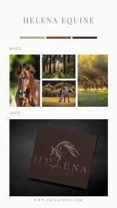 Looking for Western Mood Board Inspo? Check Out This Rugged Cow Horse Logo