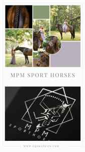 Tampa Equestrian Blogger & Horse Trainer's Logo Brings Luxury Aesthetic to Brand