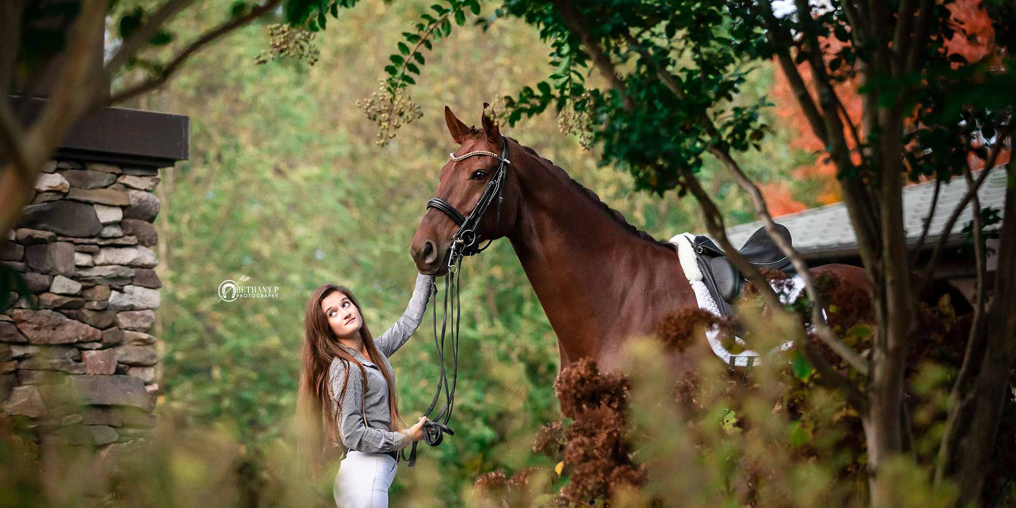EQ Graphics | Dressage Horse and Rider Photography Taken at Yellow Wood