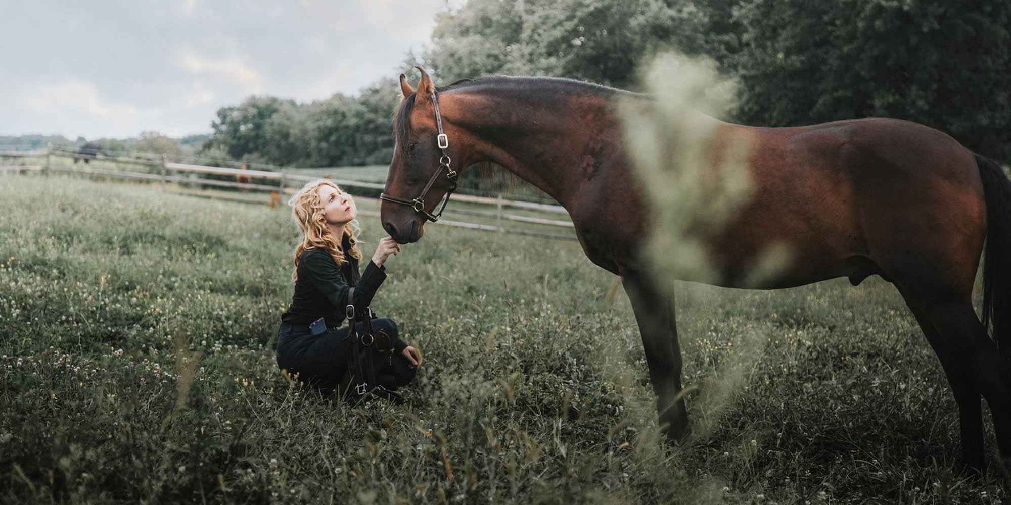 EQ Graphics   Classical Dressage Marwari Horse Photography with a Girl in an Open Field