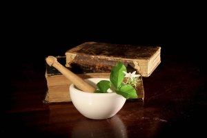 medecines naturelles phytothérapie