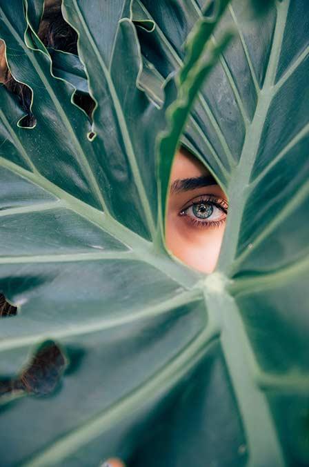 A woman looking through a big green leaf