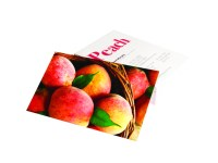 Business Cards Soft Touch Laminated