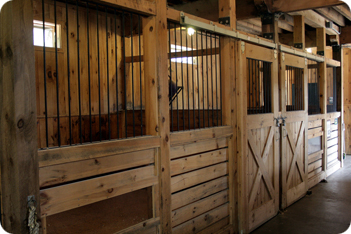 Horse Stable Types